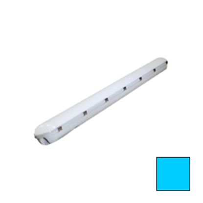 Imagen de Pantalla Estanca LED 40W IP65 Blanco Frío